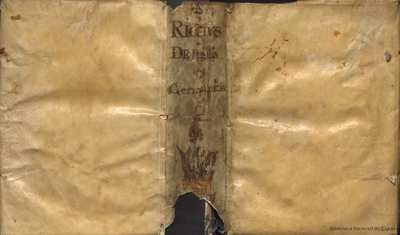 De Bellis Germanicis libri X [Texto impreso]