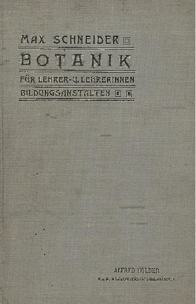 Botanik für Lehrer- und Lehrerinnen- Bildungs- Anstalten : unter Berücksichtigung der Beziehungen zwischen Bau und Leben der Pflanzen