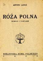 Róża polna : nowele i fantazje