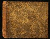 Scena e preghiera // Alma Dea che in sen mi vedi // Nel Nobile Teatro Di San Samuele // Il Carnovale dell'anno 1790 // Del Signor Maestro Giuseppe Gazzaniga Veronese