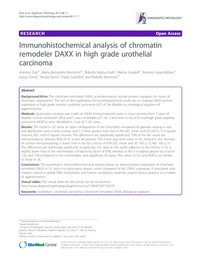 Immunohistochemical analysis of chromatin remodeler DAXX in high grade urothelial carcinoma
