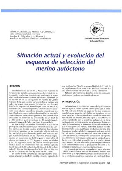 Situación actual y evolución del esquema de selección del merino autóctono