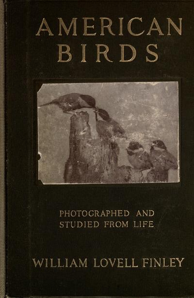 American birds studied and photographed from life / by William Lovell Finley. Illustrated with photographs by Herman T. Bohlman and the author.