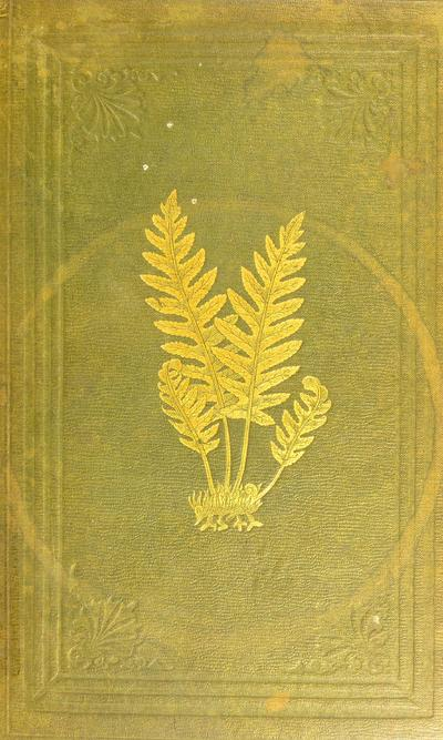 The ferns of Great Britain /