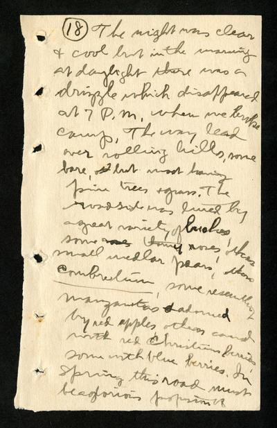 Image from object titled Handwritten China journal of Edmund Heller (2 of 5)