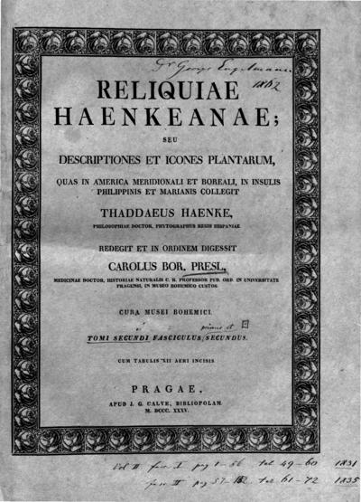 Image from object titled Reliquiae Haenkeanae, seu, Descriptiones et icones plantarum :quas in America meridionali et boreali, in insulis Philippinis et Marianis collegit Thaddaeus Haenke /redegit et in ordinem digessit Carolus Bor. Presl. Cura Musei Bohemici.; Reliq. Haenk.