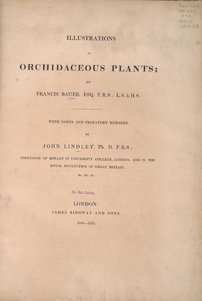 Illustrations of orchidaceous plants / by Francis Bauer; with notes and prefatory remarks by John Lindley.