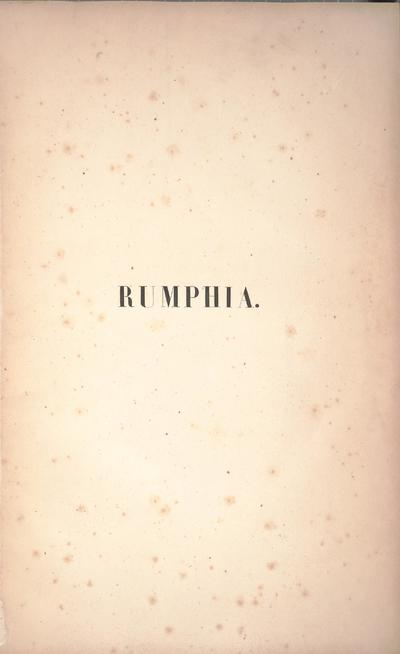 Image from object titled Rumphia, sive, Commentationes botanicæ¦ imprimis de plantis Indiæ¦ Orientalis :tum penitus incognitis tum quæ¦ in libris Rheedii, Rumphii, Roxburghii, Wallichii aliorum recensentur /scripsit C.L. Blume cognomine Rumphius.
