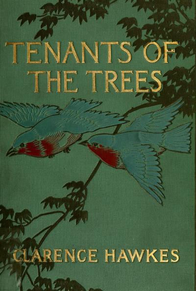 Tenants of the trees / by Clarence Hawkes, illustrated by Louis Rhead.