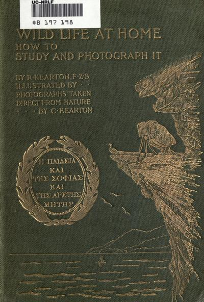 Wild life at home : how to study and photograph it / by R. Kearton ; fully illustrated by photographs taken direct from nature by C. Kearton.