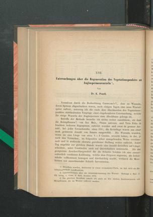 Untersuchungen über die Regeneration des Vegetationspunktes an Angiospermenwurzeln / Von Dr. K. Prantl