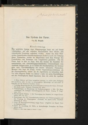 Das System der Farne / Von K. Prantl
