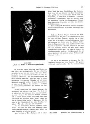 Portrait des Schriftstellers N. (Ost und West)