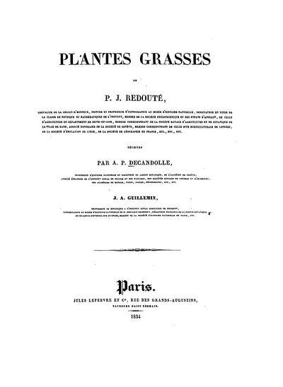 Succulents Vol. 1