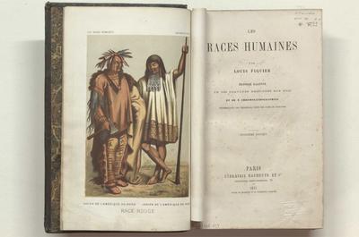 Les races humaines :