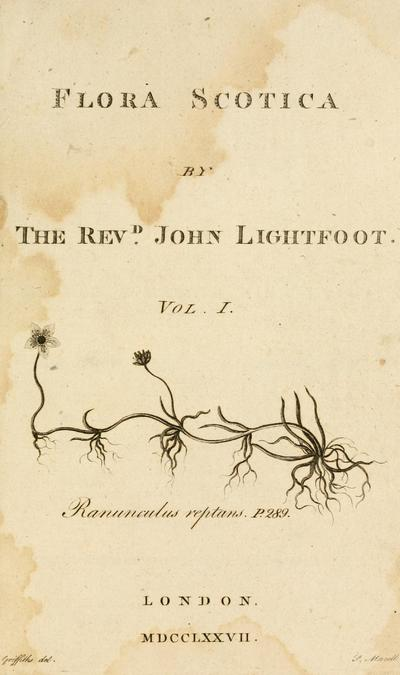 Flora Scotica: or, a systematic arrangement, in the Linnaean method, of the native plants of Scotland and the Hebrides. / By John Lightfoot ... .