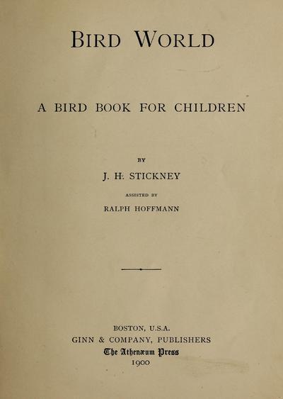 Bird world : a bird book for children /
