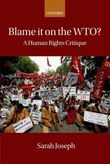 Blame It On the WTO: A Human Rights Critique