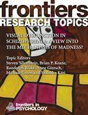 Visual Dysfunction in Schizophrenia: A View into the Mechanisms of Madness?