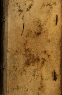 NERVI SINE MOLE h. e. CONTROVERSIARVM ROBERTI BELLARMINI S. ROM. ECCLESIAE CARDINALIS EMINENTISSIMI COMPENDIUM, a cavillis & imposturis Guilielmi Amesij, Puritani- Angli, Joannis Gerhardi, Lutherani- Jenensis &c....