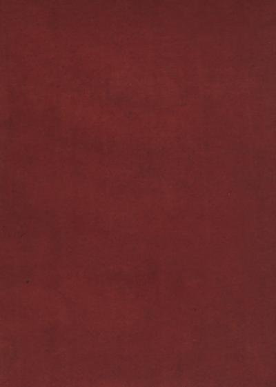 Jugendschriften : Dichtungen, Aufsätze, Vorträge, Aufzeichnungen und philologische Arbeiten 1858-1868