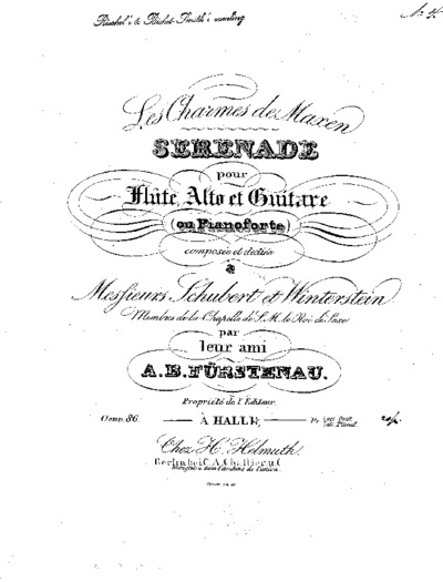Les ¤charmes de Maxen : sérénade pour flûte, alto et guitare (ou pianoforte) : Oeuv. 86