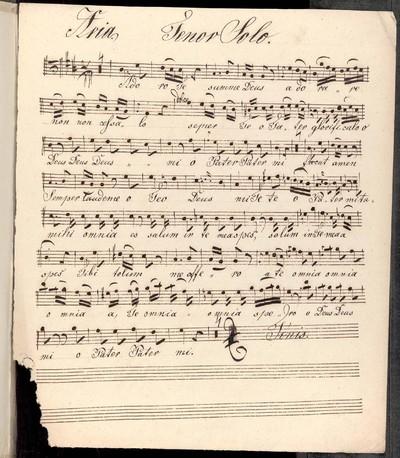 Aria. Tenor Solo, Violini duae, Viola, Clanetto [!] duae, Clarno [!] duae Organo. Autho. Ryba. Josef Janda.