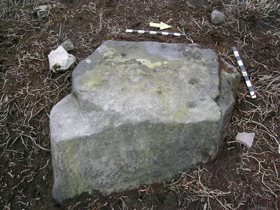 Barningham Moor 116