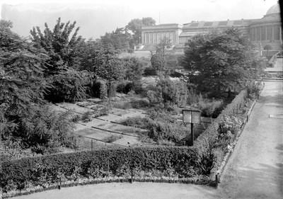 Jardin botanique de Bruxelles : Ecole de botanique et bâtiment principal #0008