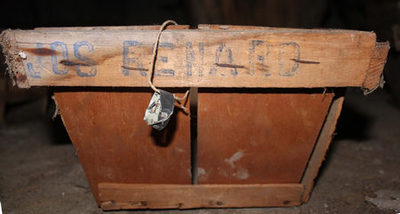 Rechthoekig kistje om pruimen, kersen en aardbeien in te verpakken