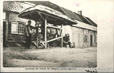 Environs de Genck en campine Limbourgeoise