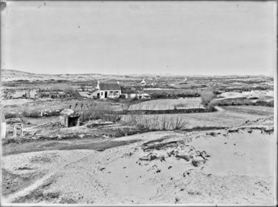 Champs cultivés dans les pannes, avant la plantation des pommes de terre, à Coxyde #2419