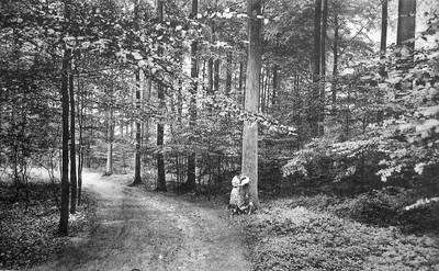 Landschap in Linkebeek