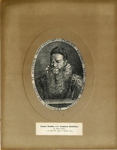 [PORTRAIT] Kaspar Bauhin, latine Casparus Bauhinus
