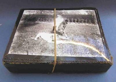 Anoniem, clichés-verre van een jong meisje met hond en Kempische landschappen, s.d., fotopapier, glas en karton.