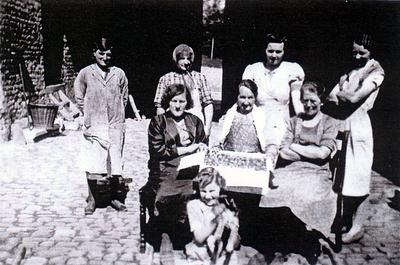 Aardbeienpluksters in Sint-Anna-Pede
