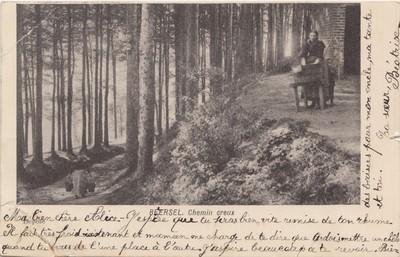 Landschap in Beersel