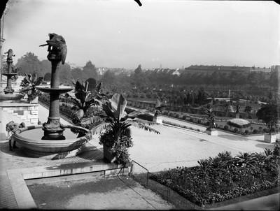 Jardin botanique de Bruxelles : Petits bassins, corbeilles de Rhododendron et école de botanique