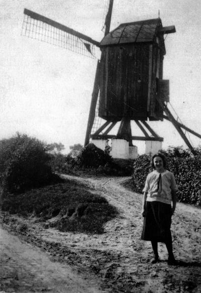 Windmolen in Dilbeek