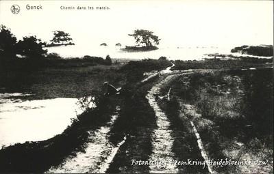 Genck Chemin dans les marais