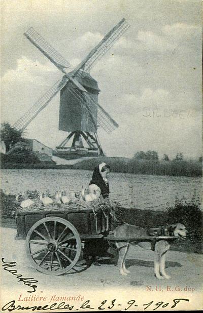 Melkkar in Dilbeek