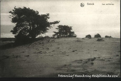 Genck - Les solitaires