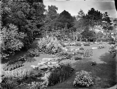 Jardin botanique de Bruxelles : Ruisseau, corbeille diverses et serre Victoria #0104