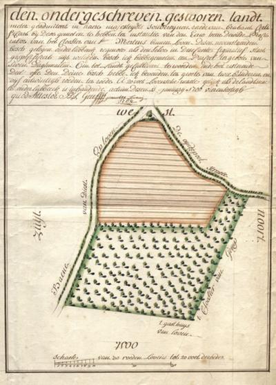 Landmeterkaart met opmeting van een bos toebehorende aan het St,-Maartensklooster van Leuven
