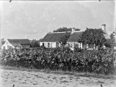Une petite ferme dans les dunes de Coxyde, en été, avec la vigne sur le toit #2141