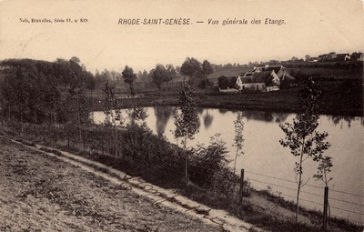 Vijver in Sint-Genesius-Rode