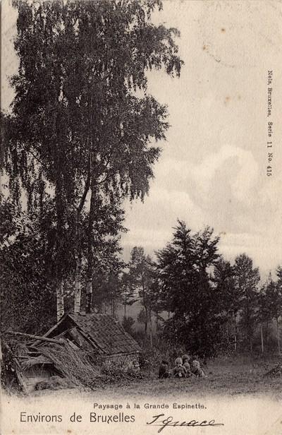 Landschap in Sint-Genesius-Rode