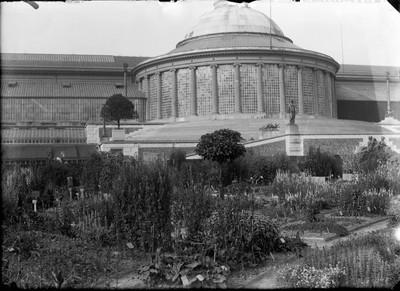 Jardin botanique de Bruxelles : Ecole de botanique et bâtiment principal #0076