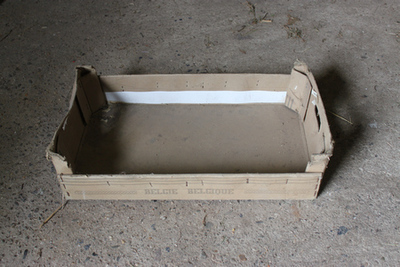 Kartonnen kist om fruit te verpakken