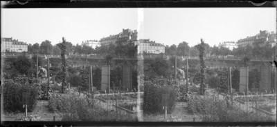 Jardin botanique de Bruxelles : Ecole de Botanique #1352